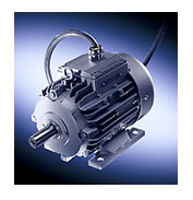 Sector Specific Motors - Smoke Extraction Motors